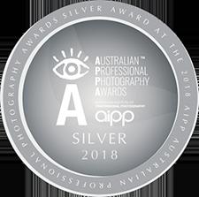 APPA Silver 2018